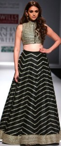 Payal Singhal's Creation, Crop top with collar and heavy embroidery and a flare skirt.