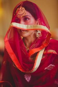 Punjabi Tikka