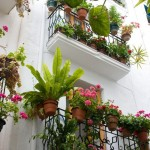 Great Balcony Ideas To Try This Spring