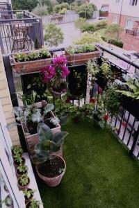 Mini Garden Balcony