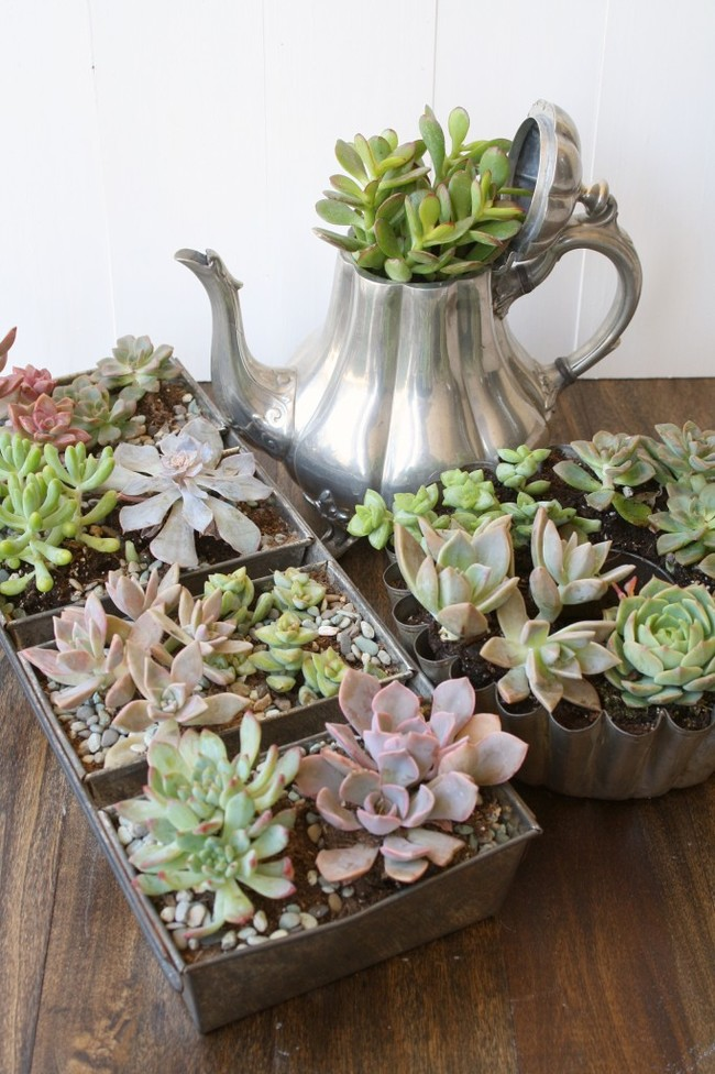 Recycling Old Kitchen Utensils For Growing Plants