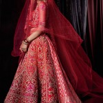 Veils- Dupatta For The New Age Brides