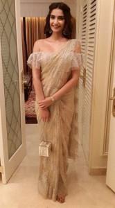 Chantley lace Saree
