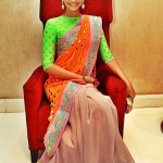 Color Blocking - The New Age Saree