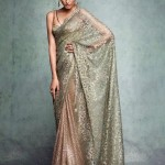 Chantley Lace Inspired Saree