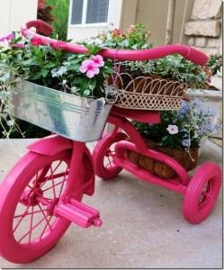 Plants on bicycle