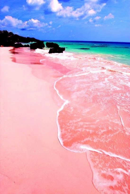 Pink Sand Beach,Bahamas