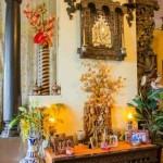 Decorating Plants Indoor- The Indian Way