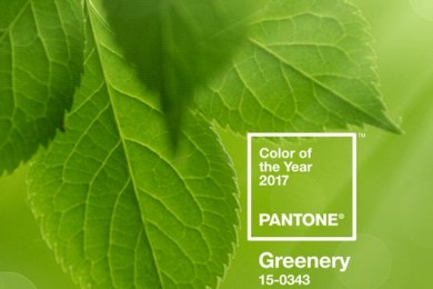 Pantone color for the year 2017