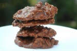 No Bake Easy Cookies Recipes