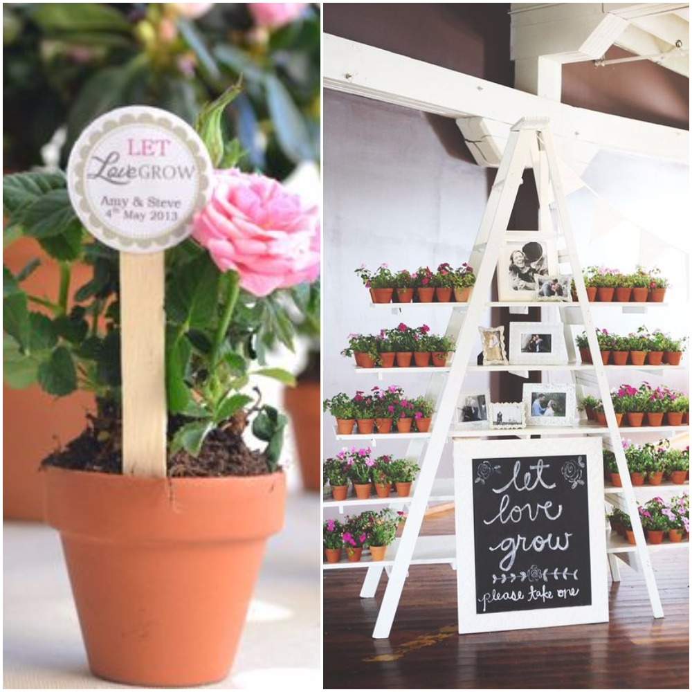 Stunning Plants As Wedding Favors Images - Styles & Ideas 2018 ...