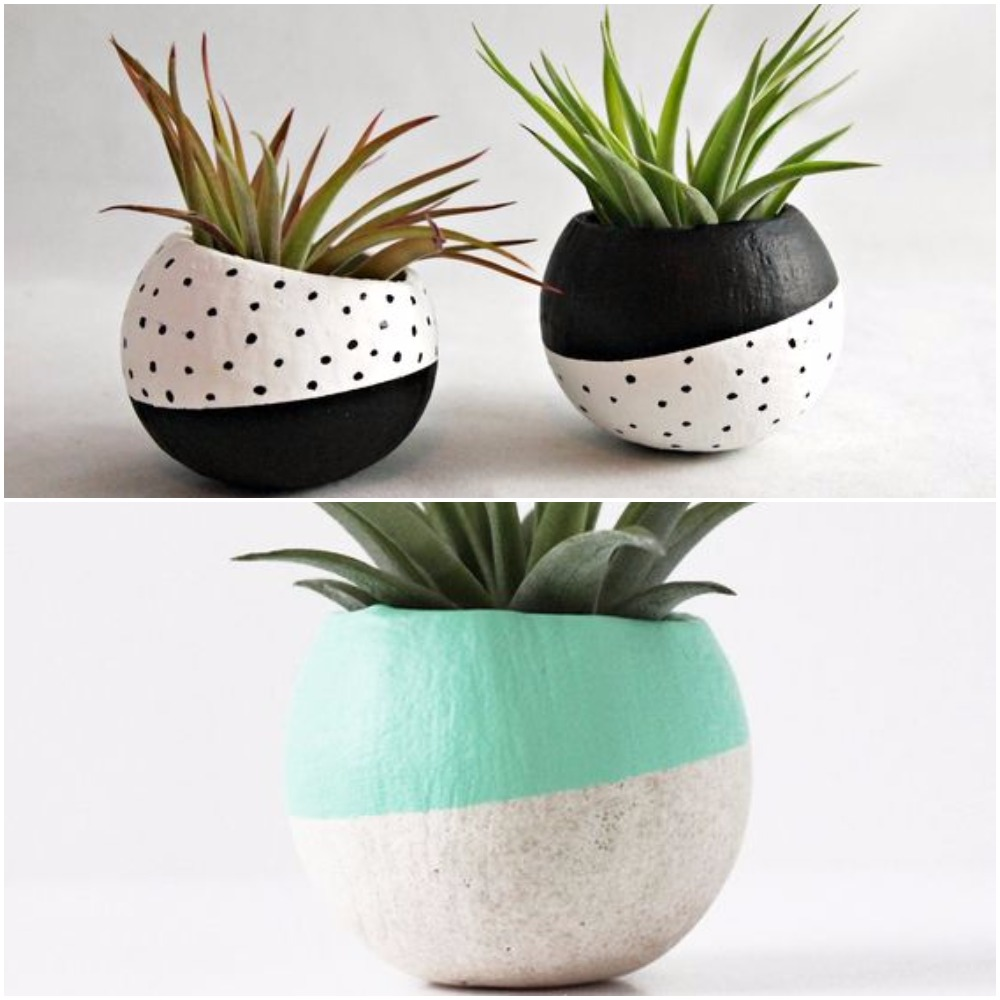 Painted coconut planters