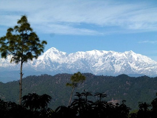 Binsar summer hill stations in India