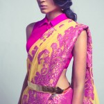 Collar Style Blouses For Saree