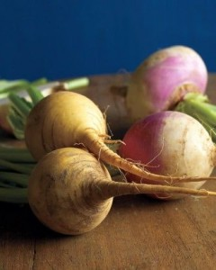 Turnip for body odor