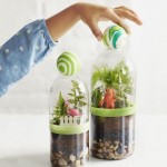 Reusing Plastic bottles For DIY projects