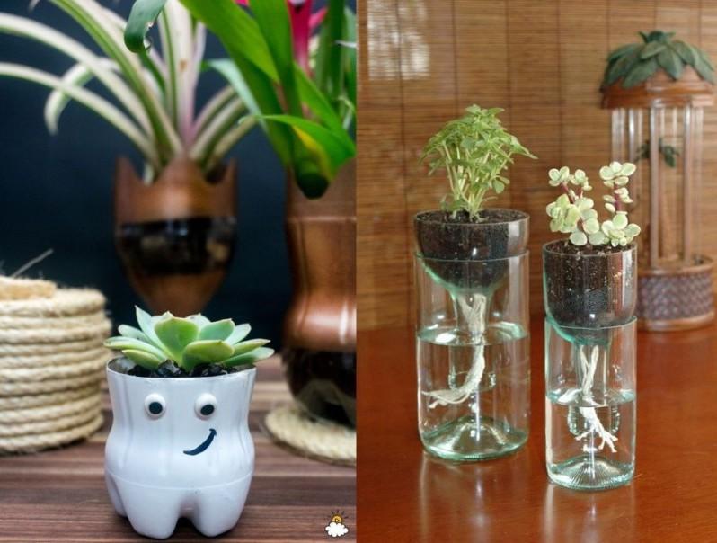 Plastic bottles planter pots