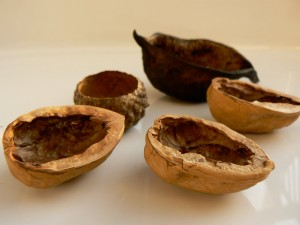 Walnut shells for hair color
