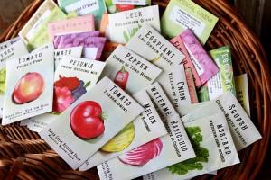 Organic seeds hamper for valentine