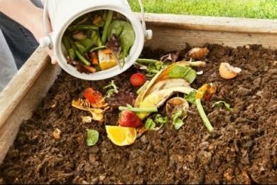 Creating Kitchen compost