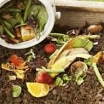 zero waste kitchen compost with vegetable peels