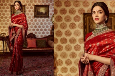 Traditional saree for lohri