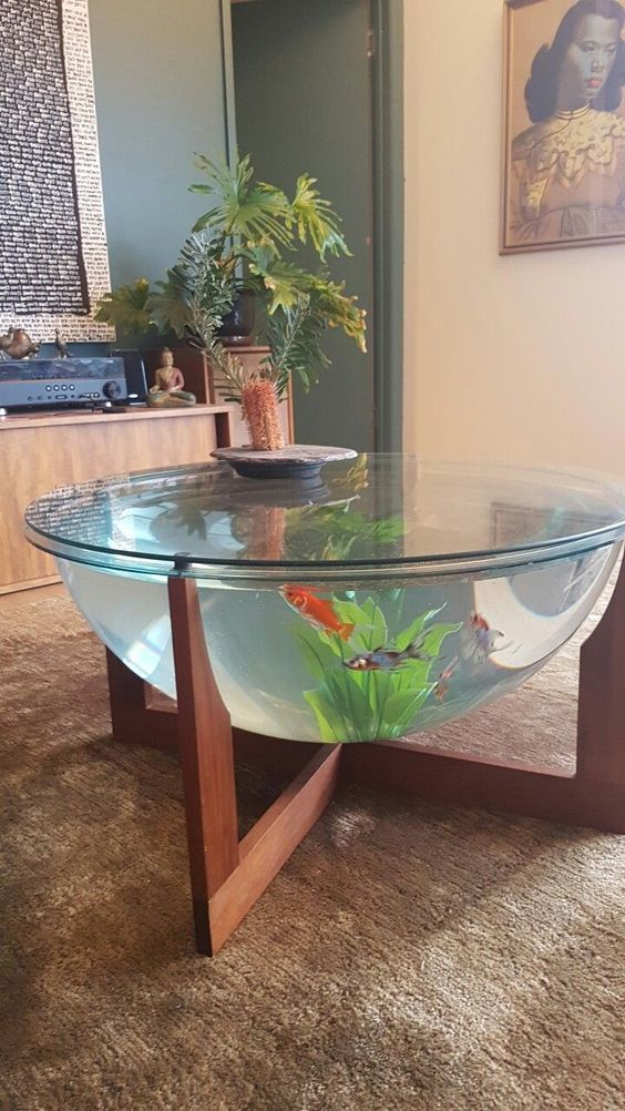 Image Result For Coffee Table Fish Tank Diy