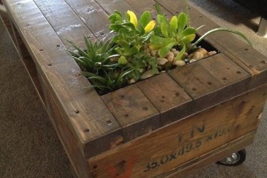 Nature Inspired Furniture With Live Plants