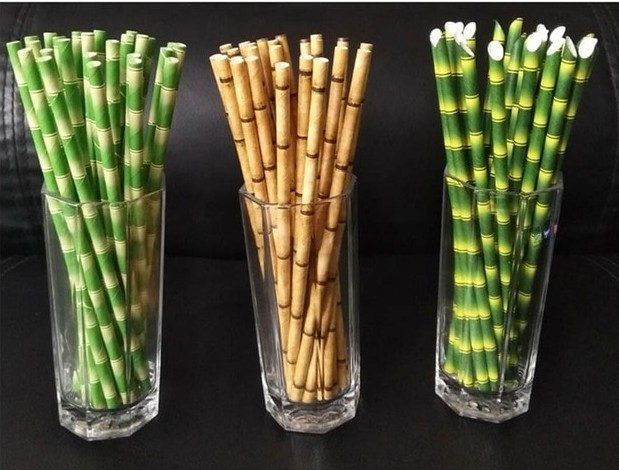 bamboo straw as a substitute to plastic straws