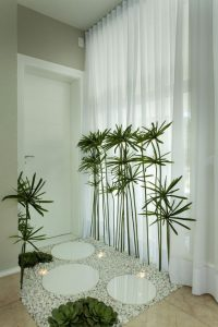 Room entrance ideas with plants
