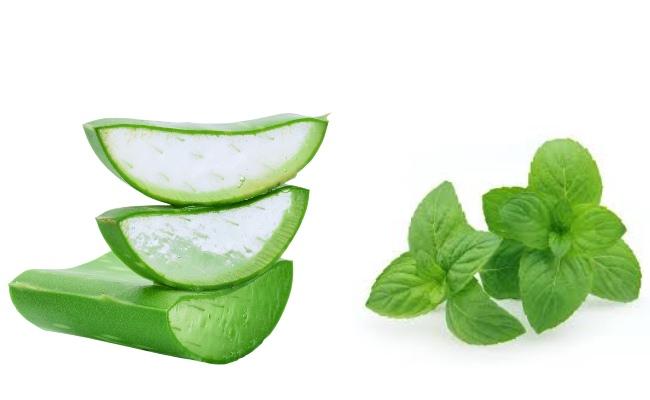 Aloe vera and mint face wash