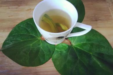 Giloy waater immunity booster drink tea