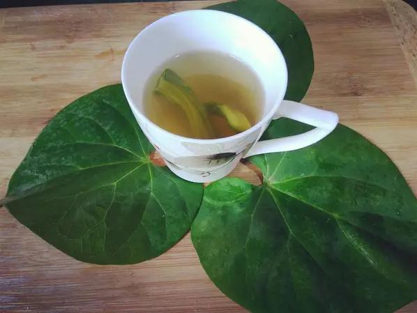 Giloy water immunity booster drink tea