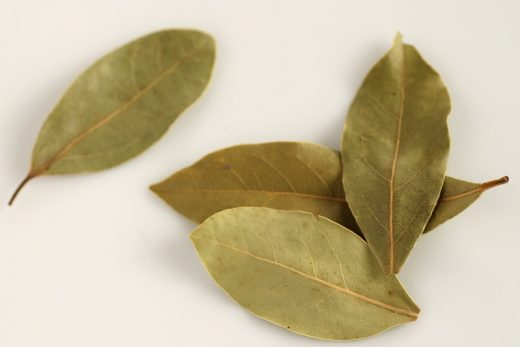 Burning Bay leaf benefits