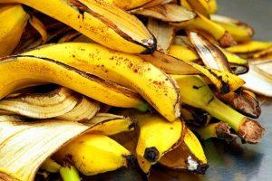Natural fertilizer for plants using kitchen waste