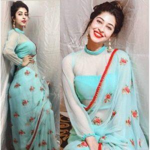 Transparent sleeves design for saree blouse design