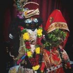 How To Celebrate Tulsi Vivah : Know The Rituals And Watch Complete Video Of Doing Vivah Pooja