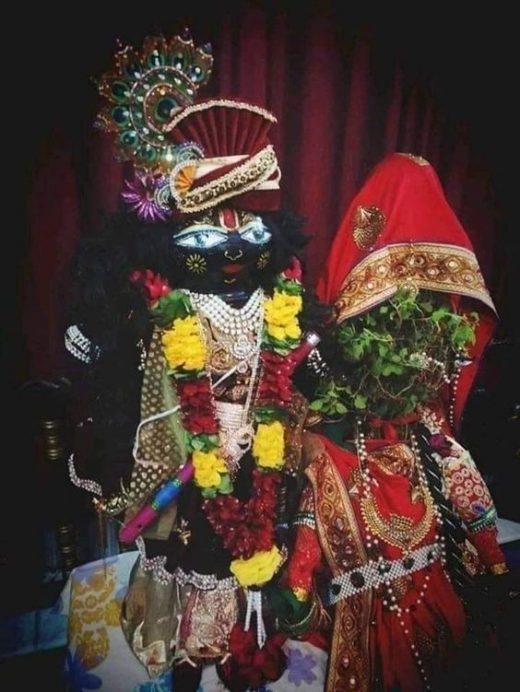 Tulsi Vivah rituals