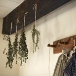 Kitchen Herbs Which Are Best To Dry