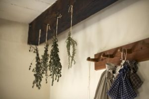 Dried herbs in kitchen