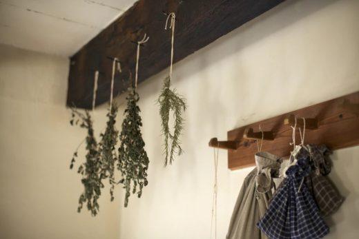 Dried herbs in kitchen