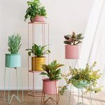 5 Planter Pots Which Are Excellent For Home Decor