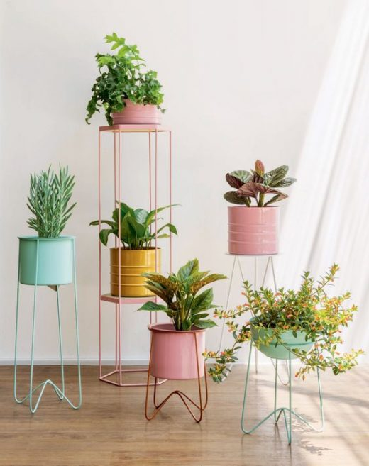 Plants pots for indoor plants and home decor