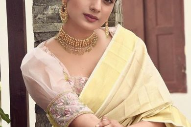 Blouse ideas for traditional handloom sarees-Threads-WeRIndia